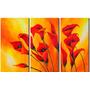 Cuadros Florales Modernos, Dipticos, Tripticos