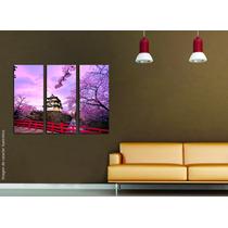 Cuadros Impresos Tripticos, Tela Canvas 50x40cm Ciudades!
