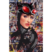 Cuadros Ladies Dc Comics Catwoman Batgirl Arlequin Supergirl