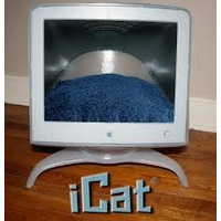 Cucha Gato Modelo Emac, Con Almohadón