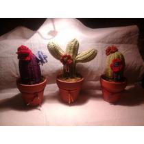 Cactus Crochet Amigurumi Feng Shui El Cristal Encantado