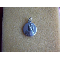 Medalla De La Virgen Maria En Plata 900