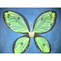 Alas De Mariposa Colores Nuevos 55 Cm X 45 Cm Verde