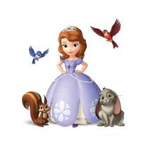 Cuadros De Princesita Sofia - Los Podes Personalizar