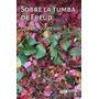 Sobre La Tumba De Freud. Gerardo Arenas. (gr)
