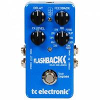 Tc Electronic Flashback Delay Digital Y Looper Con Usb