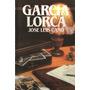 Jose Luis Cano - Biografia De Garcia Lorca Salvat
