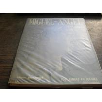 Miguel Angel. Pintor. Escultor. Arquitecto. 104 Láminas.