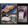 Mongolia, Fauna, Animales, Gatos, 3 Sellos Diferentes