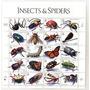 1998 Insectos- Arañas- Mariposas- Escarabajo- Estados Unidos