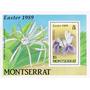 Filatelia: Montserrat Yv. 705/708 - Bl. 49 (1989) ¡flores!