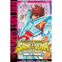 Saint Seiya - Lost - Manga - Ivrea - Tomo 37 - Collectoys