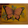 Destellos 36 Mariposa Figurita Tarjetón Familia D Topo Gigio