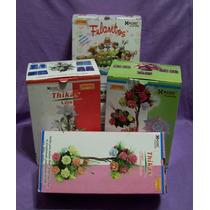 24 Moldes Tickas Para Hacer Flores Con Goma Eva Frizadores