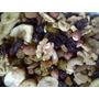 Mix De Frutas Secas Premium