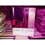 Las Flores Pcia. De Buenos Aires. Libro Album Muy Ilustrado