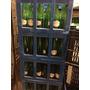 Cajon Botellas Para Cerveza Artesanal 500cm3 X 24 C/u