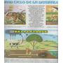 2 Laminas Anteojito El Gran Ciclo De La Naturaleza + Sarmien
