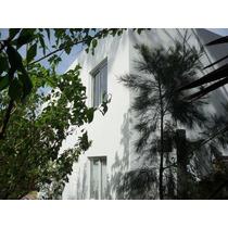 Alquiler Temporario Duplex Ostende / Pinamar Cta Atlántica