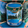 Pintura Para Piletas (fibra Y Cto) Caucho Netcolor X 1 Lt.