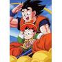 Poster Dragon Ball Super A3 Db 16