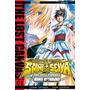 Saint Seiya The Lost Canvas 01 Ivrea Ivrea Argentina