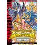 Saint Seiya The Lost Canvas 23 Ivrea Argentina