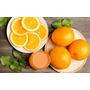 Naranja Ombligo Newhall Árbol Injertado De 1 A1,2 M Frutales