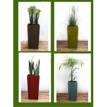 Macetas Con Plantas Para Decoración - Piramidal 60x30