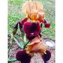 Iris Germanico Bicolor: Dorado Con Rojo Metalizado!!!