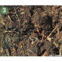 Resaca De Río-20 Litros- Cultivo Interior Y Exterior