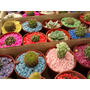 Mini Cactus Y Suculentas. Ideales Souvenir Vivero Raizmadre