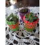 Plantas Con Maceta Decorada Crochet #suculentas