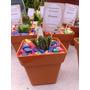 Cactus Souvenirs Eventos!