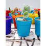Cactus Y Suculentas En Maceta Nro. 6 - Ideal Souvenir
