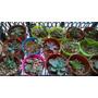 Cactus.... Crasas Y Suculentas En Macetas Nº6