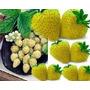 Frutillas Amarillas Sabor Parecido Al Ananá Muy Ricas !!!