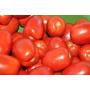 Tomate Carolina - Delicioso Y Dulce! Semillas Para Plantas