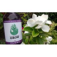 Llamarada Grow Abono Multi Etapa Vege Floración Fertilizante