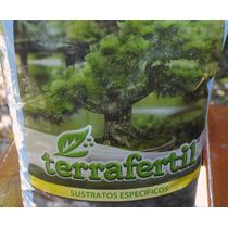 Terrafertil Sustrato Especifico Bonsai 5 Litros Arbol Viejo