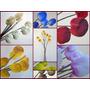 Lunas Lás Elegantes Flores De Porcelana En Bellos Colores