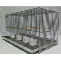 Jaulas Lopardo 53cm De Cria Con 6 Vasos - Fabricante Pajaros
