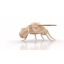 Rompecabeza Didactico 3d Insectos Mosca
