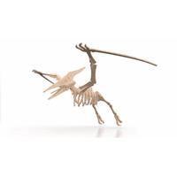 Rompecabeza Didactico 3d Dinosaurio Terodactilo