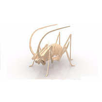 Rompecabeza Didactico 3d Insectos Grillo