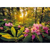 Rompecabezas Heye 2000 Piezas: Rhododendron