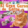 Mega Pack De Gatos 10 Libros Aprende Todo Y Educalo + Videos