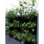Huerta Vertical P Aromáticas Y Hortalizas 15 Plantas