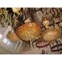Importante Araña Bronce Y Flores De Murano *restaura6*