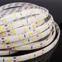 Tira De Led 5630 + Brillante Que 5050 Cool / Warm White Ip33